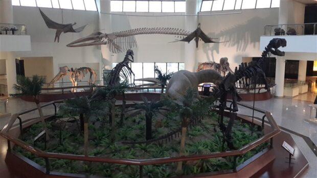 ankara mta müze