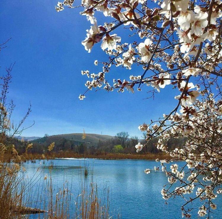 Photo of Eymir Gölü Nerede ? Eymir Gölü Giriş Kartı Ücreti ?